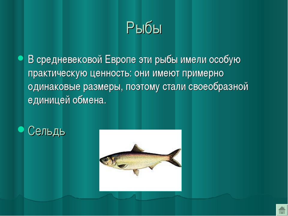 Рыбы В средневековой Европе эти рыбы имели особую практическую ценность: они...