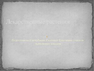 Подготовила:Санкубаева Салтанат Ельтаевна учитель начальных классов Лекарстве