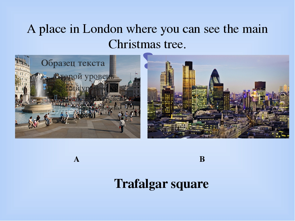 A place in London where you can see the main Christmas tree. A B Trafalgar sq...