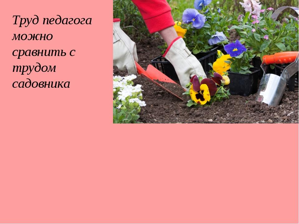 Труд педагога можно сравнить с трудом садовника