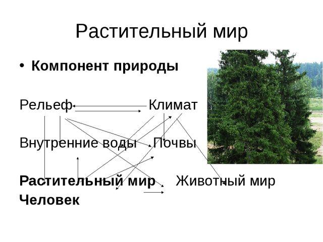 Растительный мир Компонент природы Рельеф Климат Внутренние воды Почвы Растит...