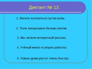 Диктант № 13. 1. Весело колоситься густая рожь. 2. Поля запорошило белым снег