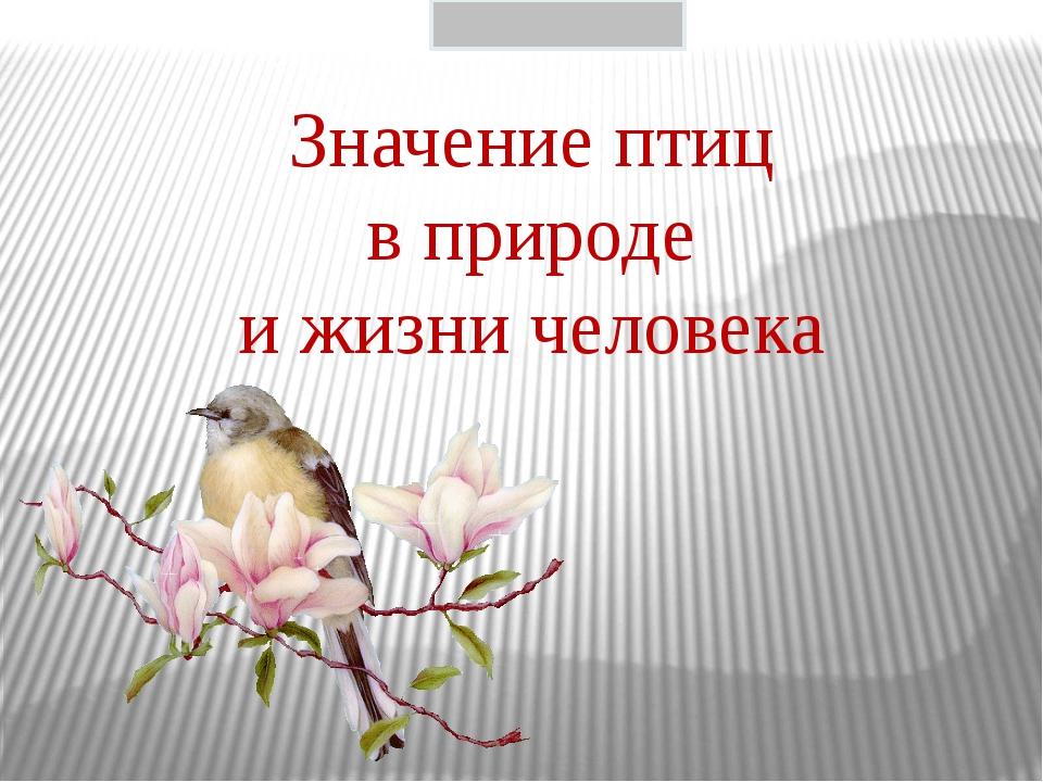 Значение птиц в природе и жизни человека