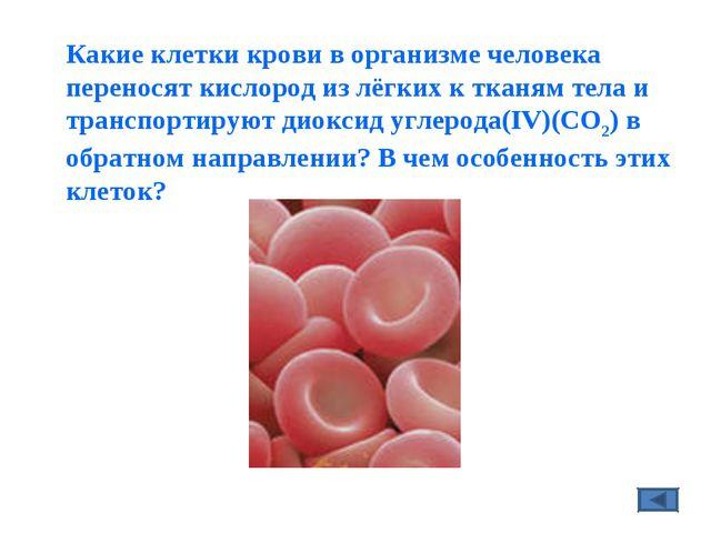 Какие клетки крови в организме человека переносят кислородизлёгкихк тканям...