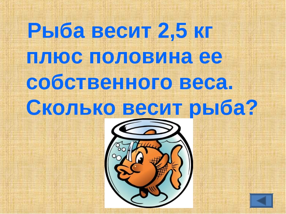 Рыба весит 2,5 кг плюс половина ее собственного веса. Сколько весит рыба?