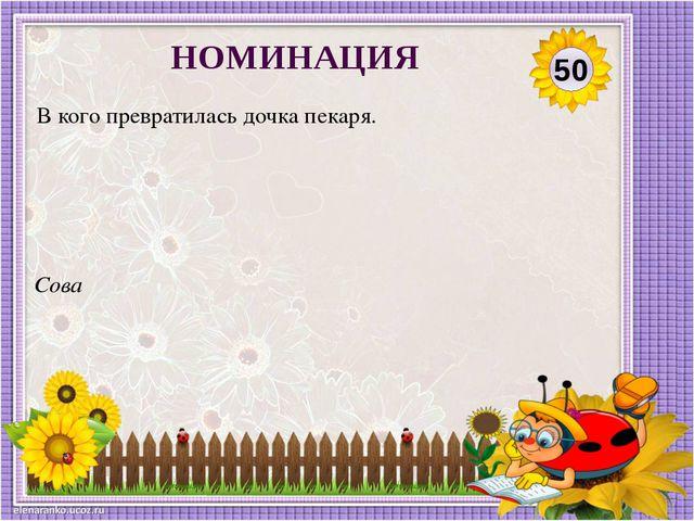 Сова В кого превратилась дочка пекаря. 50 НОМИНАЦИЯ