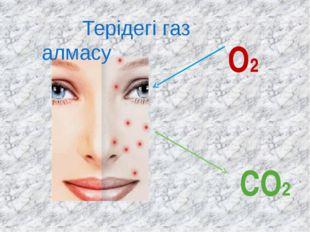 О2 СО2 Терідегі газ алмасу
