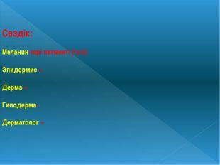 Сөздік: Меланин-тері пигменті (түсі) Эпидермис – Дерма – Гиподерма- Дерматоло