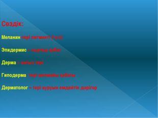 Сөздік: Меланин-тері пигменті (түсі) Эпидермис – сыртқы қабат Дерма – нағыз т