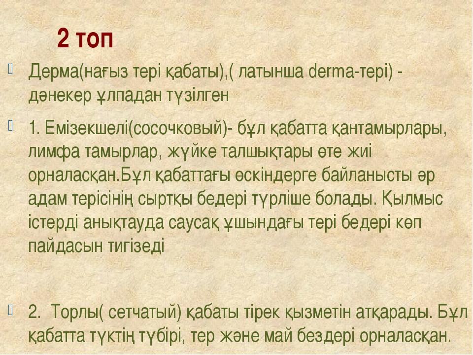 2 топ Дерма(нағыз тері қабаты),( латынша derma-тері) - дәнекер ұлпадан түзілг...
