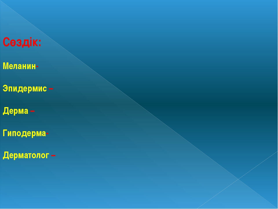 Сөздік: Меланин- Эпидермис – Дерма – Гиподерма- Дерматолог –