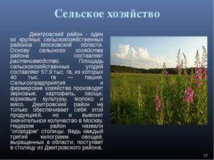 Сельское хозяйство Дмитровский район - один из крупных сельскохозяйственных