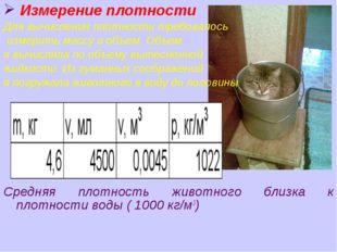 Измерение плотности Для вычисления плотности требовалось измерить массу и об