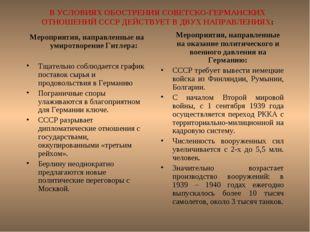 В УСЛОВИЯХ ОБОСТРЕНИЯ СОВЕТСКО-ГЕРМАНСКИХ ОТНОШЕНИЙ СССР ДЕЙСТВУЕТ В ДВУХ НАП