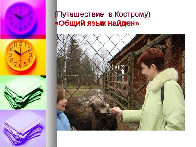 (Путешествие в Кострому) «Общий язык найден»