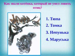 Как звали котёнка, который не умел ловить птиц? 4. Маруська 3. Непунька 2. То