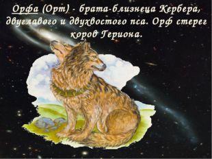 Орфа (Орт) - брата-близнеца Кербера, двуглавого и двухвостого пса. Орф стерег