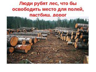 Люди рубят лес, что бы освободить место для полей, пастбищ, дорог