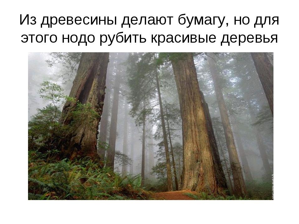 Из древесины делают бумагу, но для этого нодо рубить красивые деревья