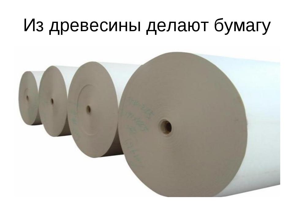Из древесины делают бумагу