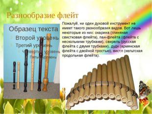 Разнообразие флейт Пожалуй, ни один духовой инструмент не имеет такого разноо