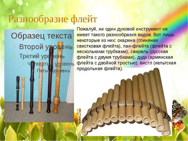 Разнообразие флейт Пожалуй, ни один духовой инструмент не имеет такого разноо...