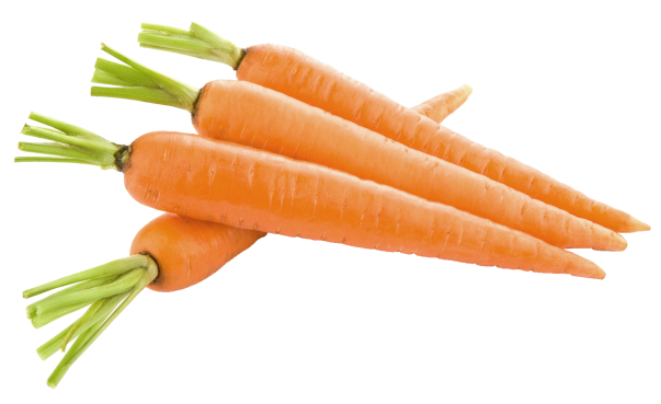 http://pngimg.com/upload/carrot_PNG4985.png