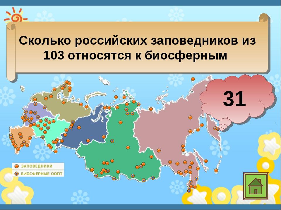 Сколько российских заповедников из 103 относятся к биосферным 31