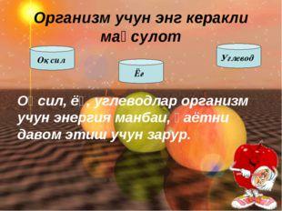 Оқсил, ёғ, углеводлар организм учун энергия манбаи, ҳаётни давом этиш учун за