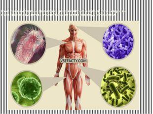 Рассматривая интересные факты о бактериях, обязательно следует отметить – общ