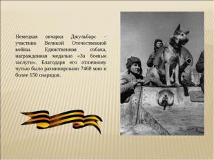 Немецкая овчарка Джульбарс – участник Великой Отечественной войны. Единственн