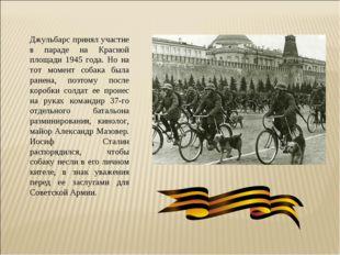 Джульбарс принял участие в параде на Красной площади 1945 года. Но на тот мом