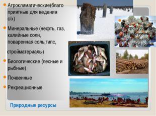 Природные ресурсы Агроклиматические(благоприятные для ведения с/х) Минеральны