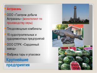 Крупнейшие предприятия Астрахань ООО «Газпром добыча Астрахань» (монополист п