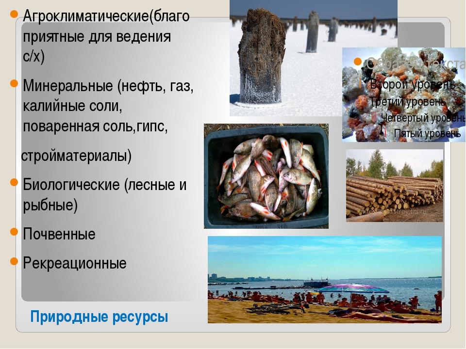 Природные ресурсы Агроклиматические(благоприятные для ведения с/х) Минеральны...