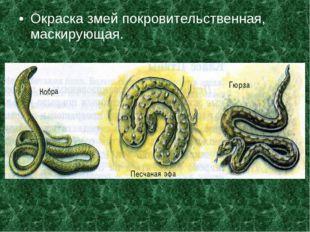 Окраска змей покровительственная, маскирующая.