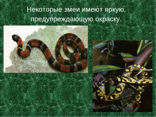 Некоторые змеи имеют яркую, предупреждающую окраску.