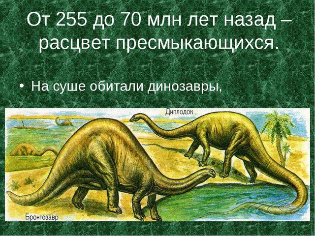 От 255 до 70 млн лет назад – расцвет пресмыкающихся. На суше обитали динозавры,