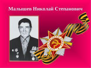 Малышев Николай Степанович