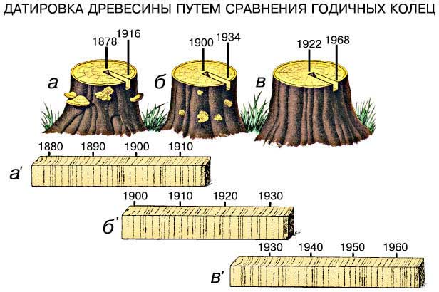 http://dic.academic.ru/pictures/enc_colier/0816_025.jpg