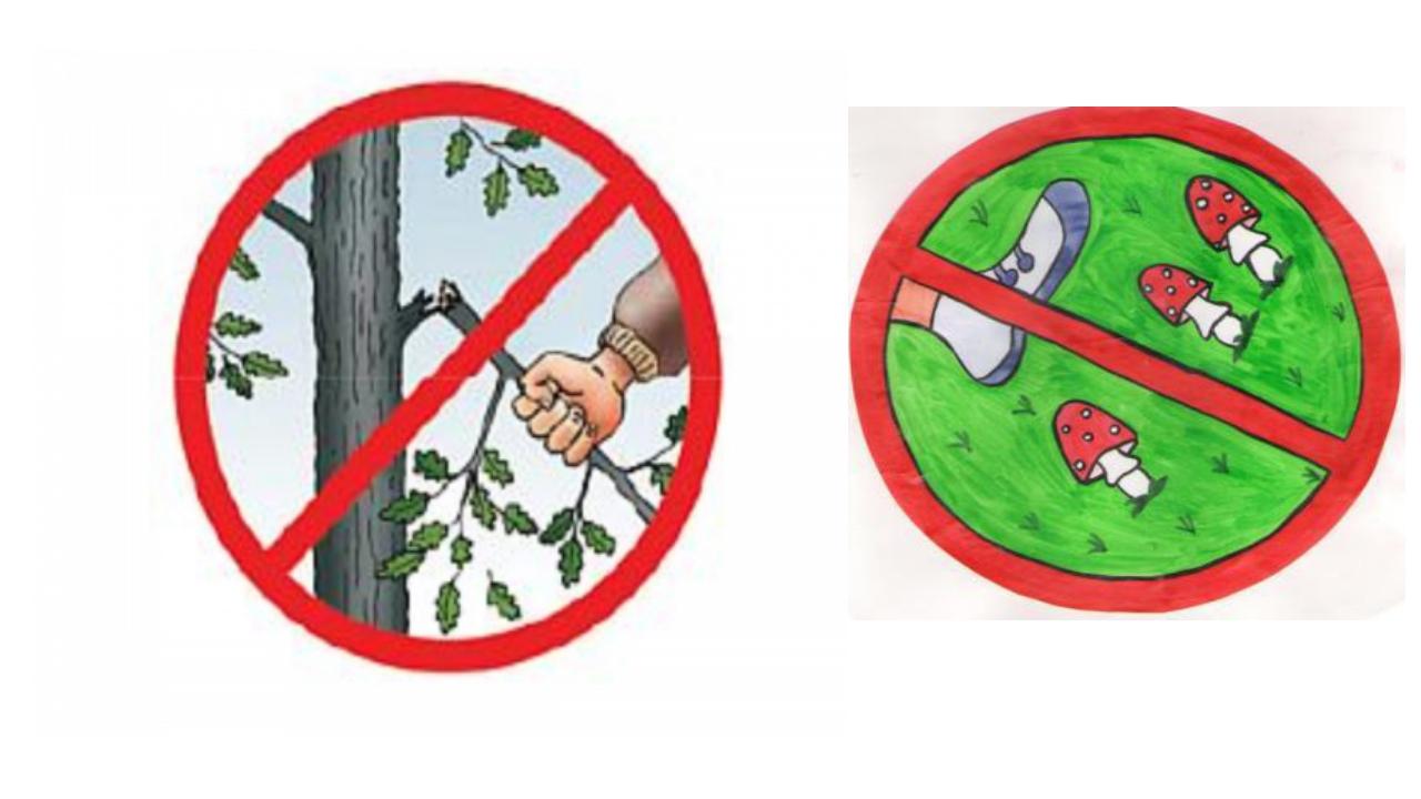 Картинки запрещающие знаки по экологии