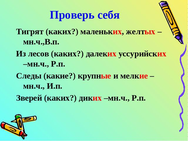 Проверь себя Тигрят (каких?) маленьких, желтых –мн.ч.,В.п. Из лесов (каких?)...