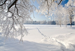 http://ru-pogoda.ru/zimaa.jpg