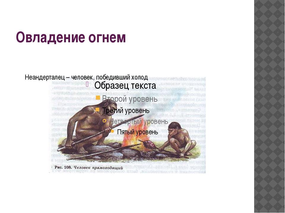 Овладение огнем Неандерталец – человек, победивший холод