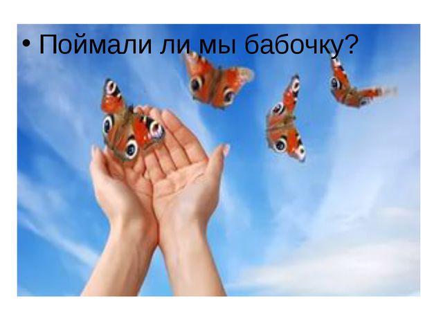 Поймали ли мы бабочку?