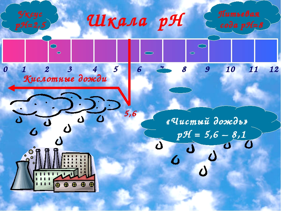 Кислотные дожди 5,6 Шкала рН Уксус рН=2,5 Питьевая сода рН=8