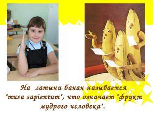 """На латыни банан называется """"musa sapientum"""", что означает """"фрукт мудрого чело"""