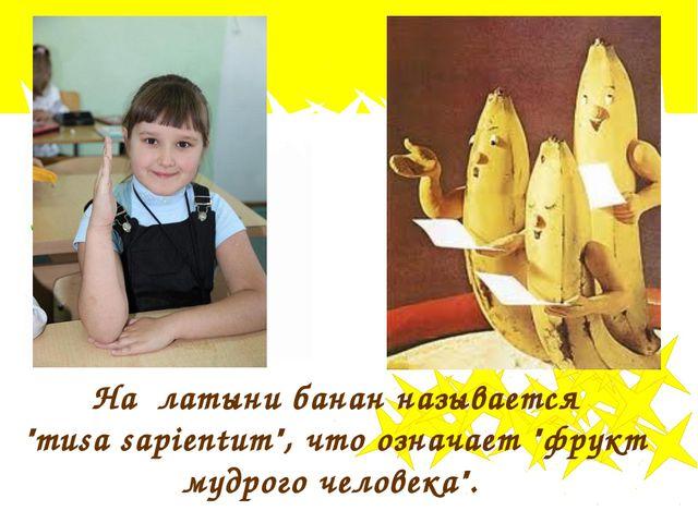 """На латыни банан называется """"musa sapientum"""", что означает """"фрукт мудрого чело..."""
