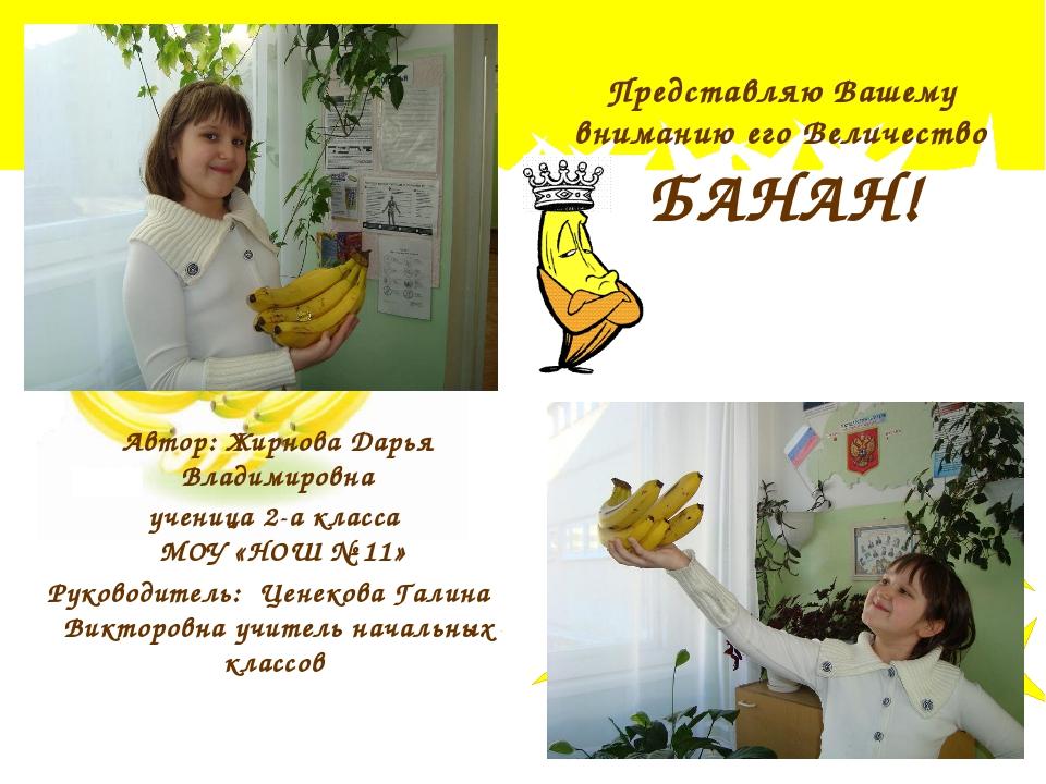 Представляю Вашему вниманию его Величество БАНАН! Автор: Жирнова Дарья Владим...