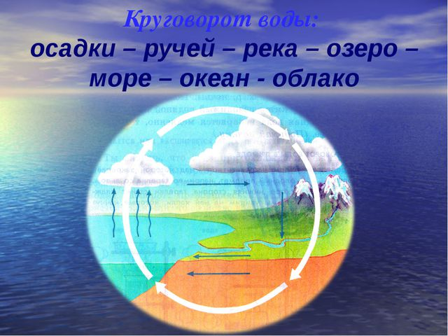 Круговорот воды: осадки – ручей – река – озеро – море – океан - облако